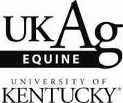 horse breeding equine reproduction stallion