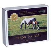 Predict-a-foal